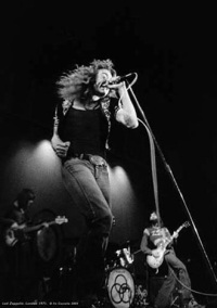 led_zeppelin_330x470.jpg